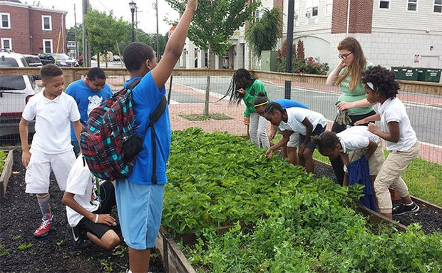 Pictured, Participants Of The Mid Atlantic States Career And Education  Center Youth Program U201cWe Grow Starsu201d Explore The Salem City Community Garden  With ...